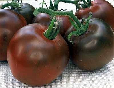 Black Prince Tomato - Bulk Vegetable Seeds - 200 seeds