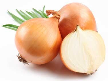Australian Brown Onion - Bulk Vegetable Seeds - 50 grams