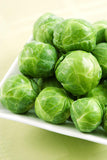 Long Island Brussel Sprouts - Bulk Vegetable Seeds - 50 grams