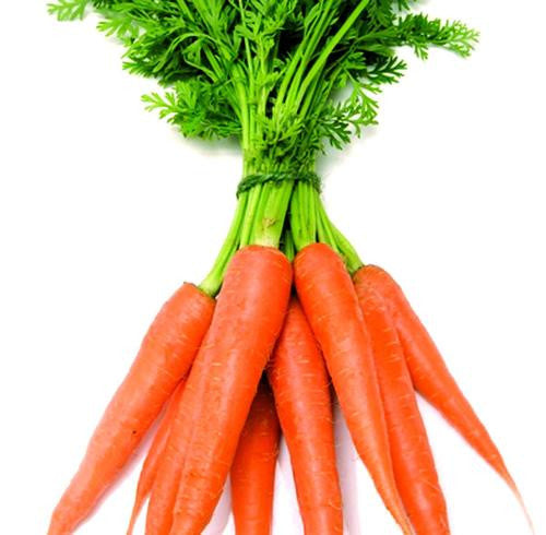 Cape Market Carrot - Bulk Vegetable Seeds - 100 grams
