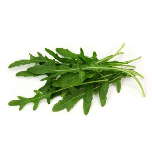 Rocket / Arugula - Bulk Herb Seeds - 200 grams
