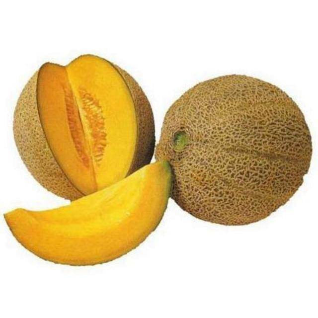 Hales Best Melon Spanspek - Bulk Fruit Seeds - 50 grams