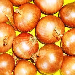 Ferrari F1Shallots - Bulk Vegetable Seeds - 200 seeds