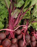 Green Top Bunching Beetroot - ORGANIC - Heirloom Vegetable - 50 Seeds
