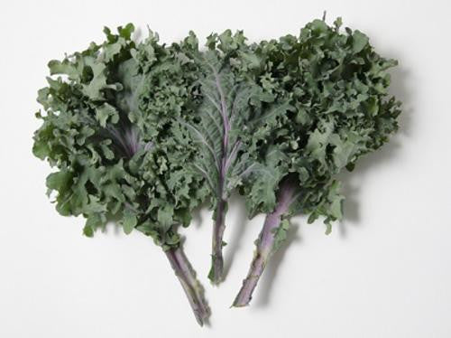 Red Russian Kale - ORGANIC - Heirloom Vegetable - 50 Seeds