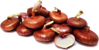 Red Cippolini Onion - ORGANIC - Heirloom Vegetable - 50 Seeds