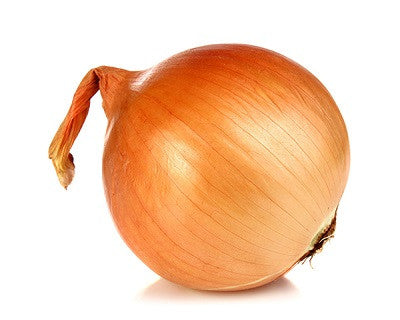 Texas Grano Onion - ORGANIC - Heirloom Vegetable - 50 Seeds