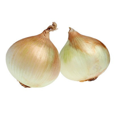 Walla Walla Onion - ORGANIC - Heirloom Vegetable - 50 Seeds