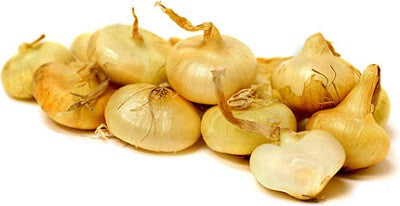 Yellow Cippolini Onion - ORGANIC - Heirloom Vegetable - 50 Seeds