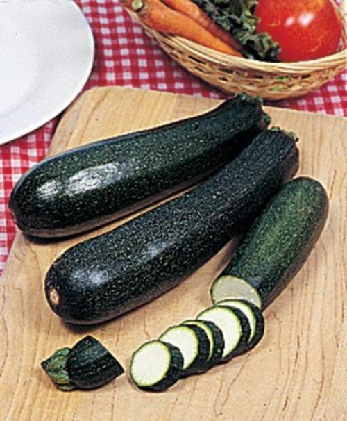 Black Zucchini - ORGANIC - Heirloom Vegetable - 10 Seeds