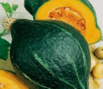 Chicago Warted Green Hubbard Squash - ORGANIC - Heirloom Vegetable - 5 Seeds