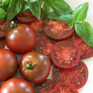 Black Prince Tomato - ORGANIC - Heirloom Vegetable - 10 Seeds