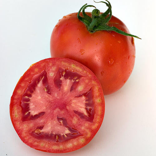 Floradade Tomato - ORGANIC - Heirloom Vegetable - 20 Seeds