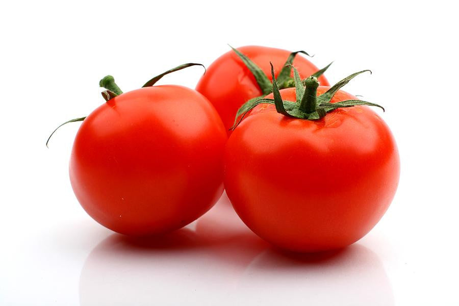 Homestead Tomato - ORGANIC - Heirloom Vegetable - 20 Seeds