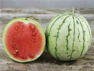 Dixie Queen Watermelon - ORGANIC - Heirloom Vegetable - 5 Seeds