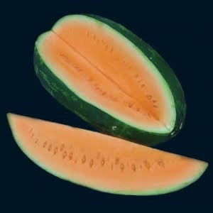 Orange Tendersweet Watermelon - ORGANIC - Heirloom Vegetable - 5 Seeds