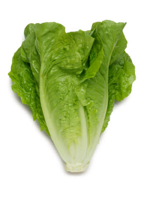 St Blaise Cos Lettuce - Lactuca sativa - Organic Heirloom Vegetable - 100 seeds
