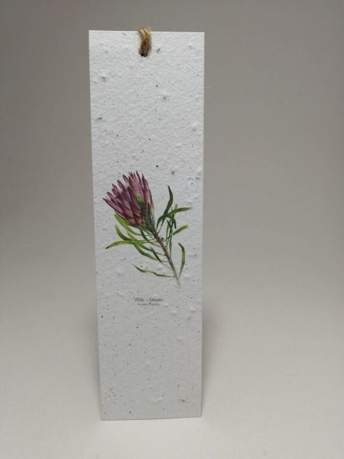 Growing Paper - Bookmark - Protea