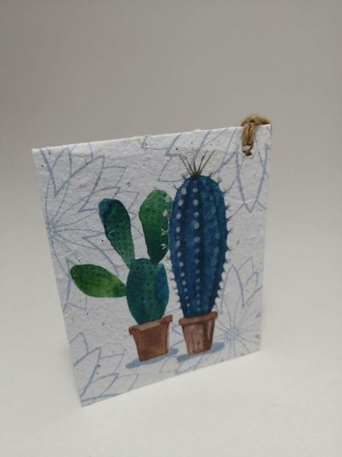 Growing Paper - Gift Tag - Single - Cactus