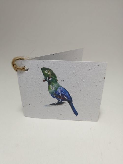 Growing Paper - Gift Tag - Single - Bird