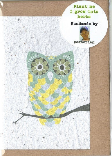 Growing Paper - Greeting Card - Owl