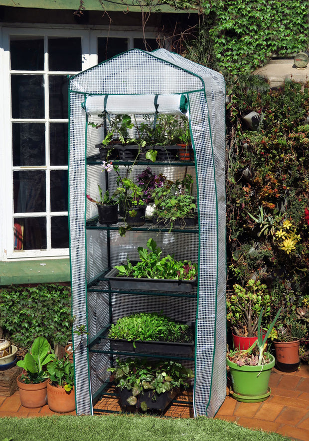 Tiered Walk-in Greenhouse 5 Shelves 70cm x 50cm x 193cm