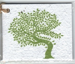 Growing Paper - Single Gift Tag - Windy Tree