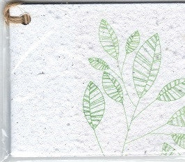 Growing Paper - Single Gift Tag -  Leaf