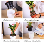 Set of 3 Self Watering Urban Hydroponic Pots