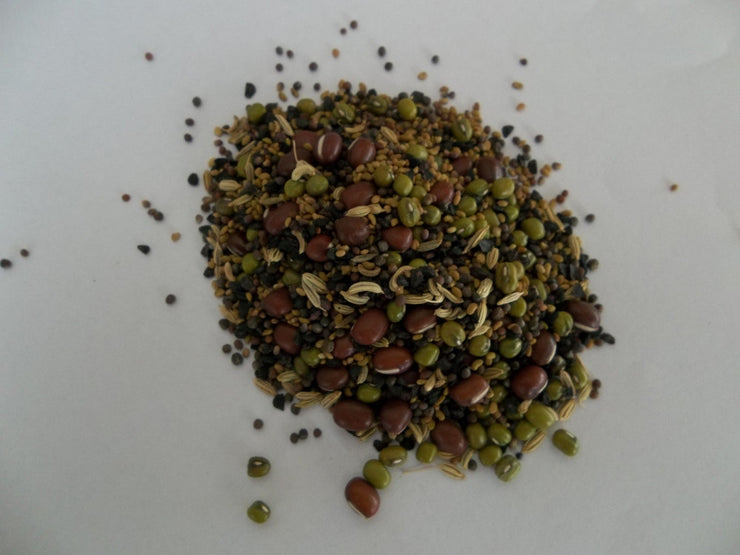 Italian Salad Mix - Sprouting Seeds