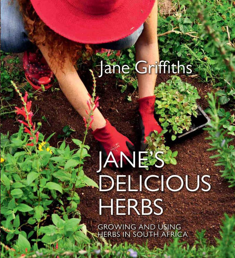 Jane's Delicious Herbs - Growing And Using Herbs In South Africa Hardback book