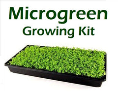 Microgreen Growing Kit incl Seeds, Growing Tray & Growing Medium
