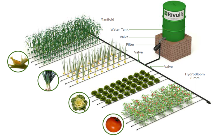 Drip Irrigation Kit - Commercial Grade - Rivulis - 100m2 coverage