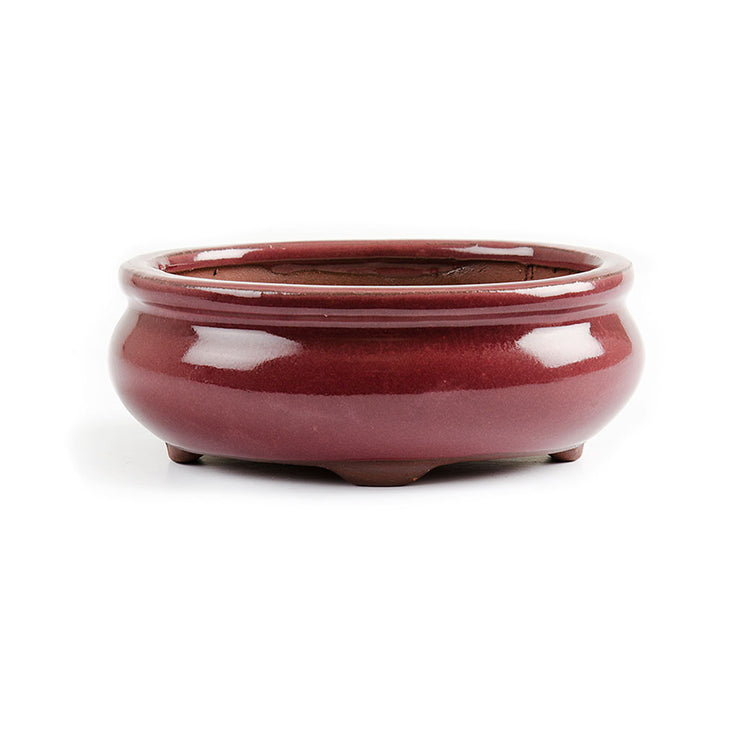 11.5cm x 9.5cm x 5cm Glazed Bonsai Container - Oxblood