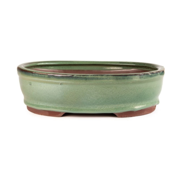 Glazed 25cm x 20cm x 8cm Bonsai Container - Green