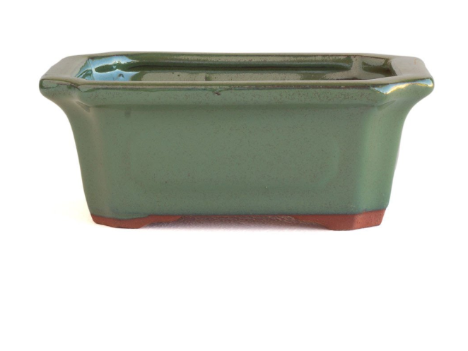 Glazed 30cm x 24cm x 10cm Bonsai Container - Green
