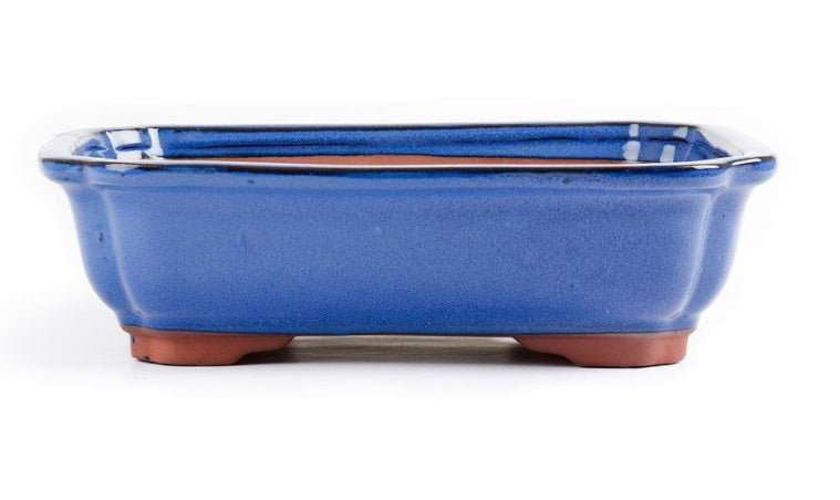 26cm x 20cm x 7cm - Glazed Bonsai Container - Dark Blue