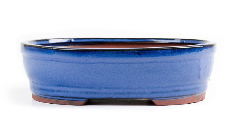 21cm x 16cm x 6cm - Glazed Bonsai Container - Blue