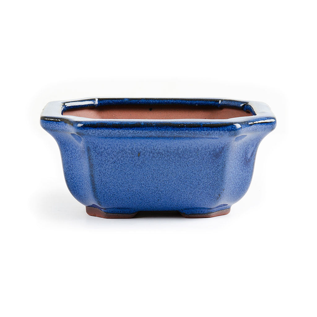 13cm x 11cm x 6cm Glazed Bonsai Container - Dark Blue