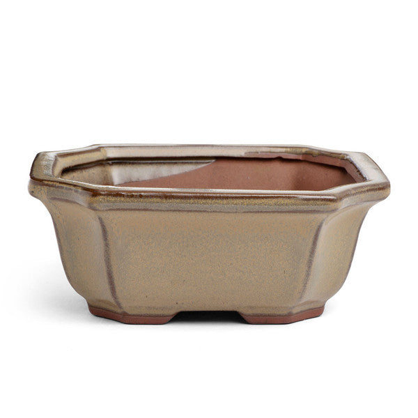 16cm x 14cm x 7cm Glazed Bonsai Container - Mustard