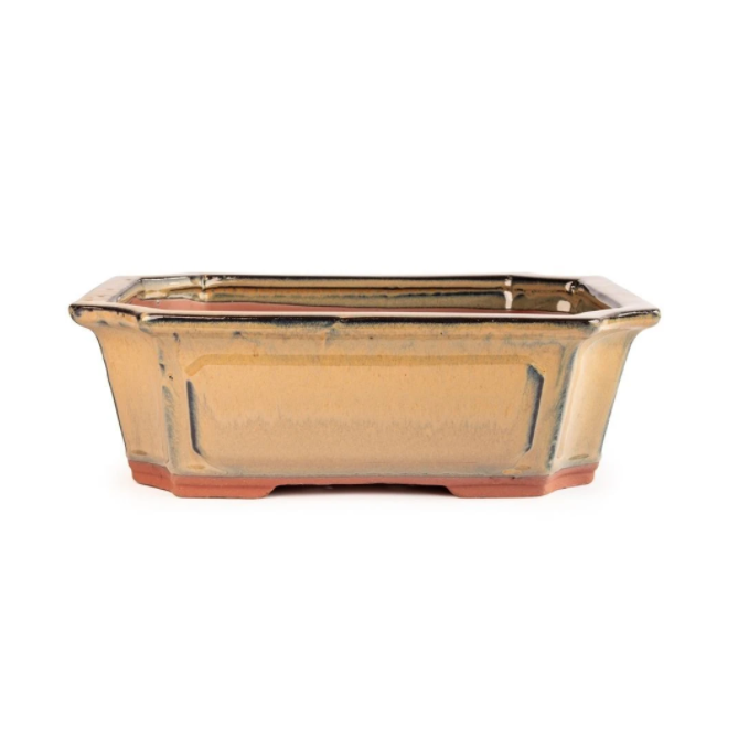 16cm x 12cm x 6cm Glazed Bonsai Container - Mustard