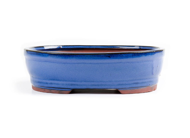 15cm x 11cm x 4.5cm Glazed Bonsai Container - Dark Blue
