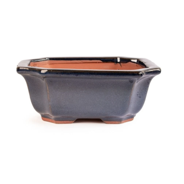 16cm x 14cm x 6cm Glazed Bonsai Container - Dark Navy