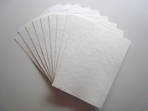 Growing Paper - Pack of 5 plain A4 Sheets