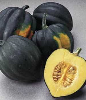 Table King Acorn Squash - ORGANIC - Heirloom Vegetable - 10 Seeds