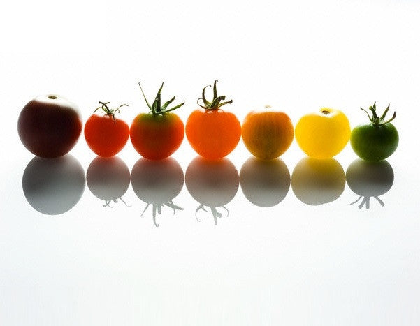 Organic Multicolour Cherry Tomato Pack - 10 Varieties