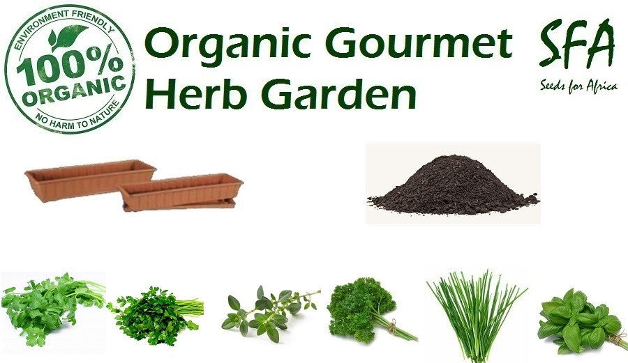 100% Organic Gourmet Herb Garden - Grow your own fresh herbs in your kitchen