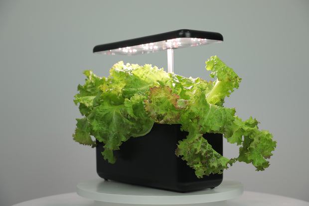 Urban Cube 7 - Indoor Hydroponic Growing System Kit