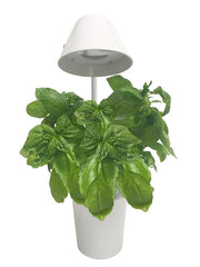 Urban Nano - Indoor Hydroponic Growing System Kit