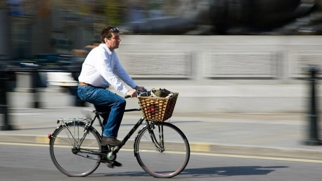 Bike to Work - Baskets